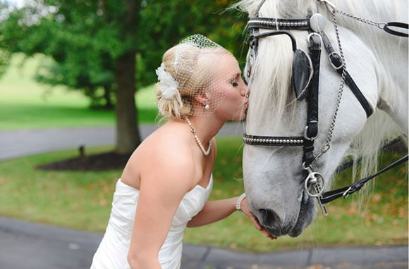 Bride and carriage horse