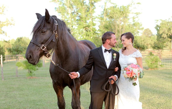Newlywed couple with a horse