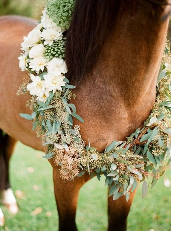 Floral wreath around the horse's neck