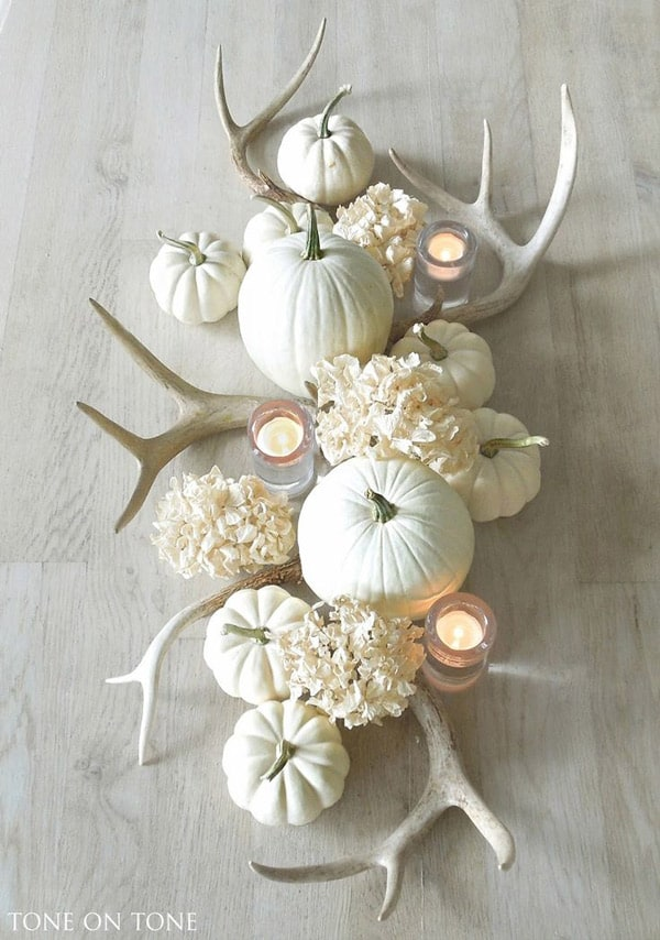 Antlers-and-white-pumpkins