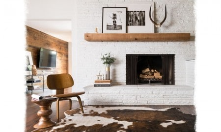 cowhide_feature