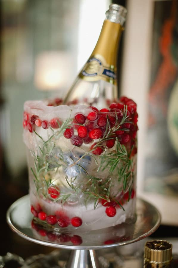 cranberry-ice-bucket