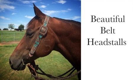 Belt headstalls