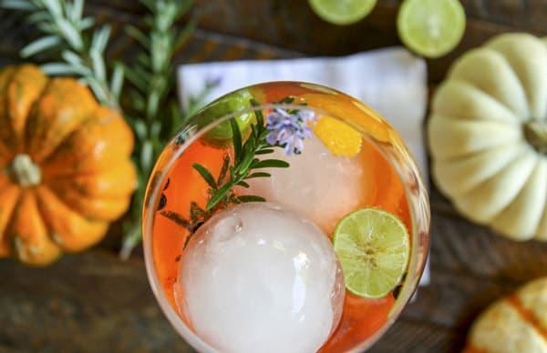 Aperol Gin Punch Recipes — Dishmaps