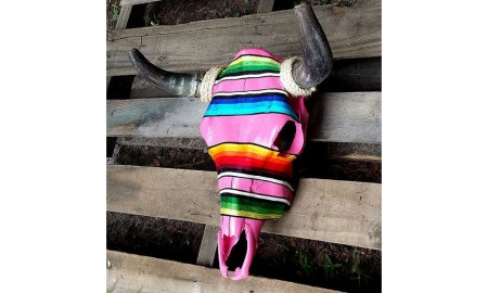 serape steer skulls for the home