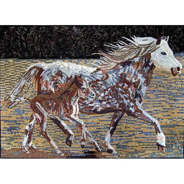 COWGIRL magazine home decor mosaic