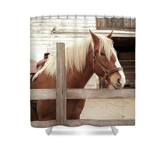 Horse Shower Curtains For Your Bathroom Page 5 Of