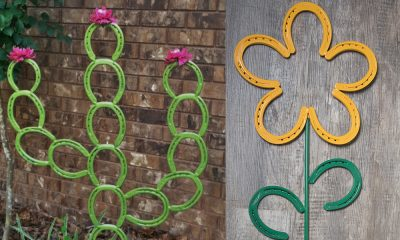 horseshoe yard decor