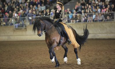 northwest horse expo
