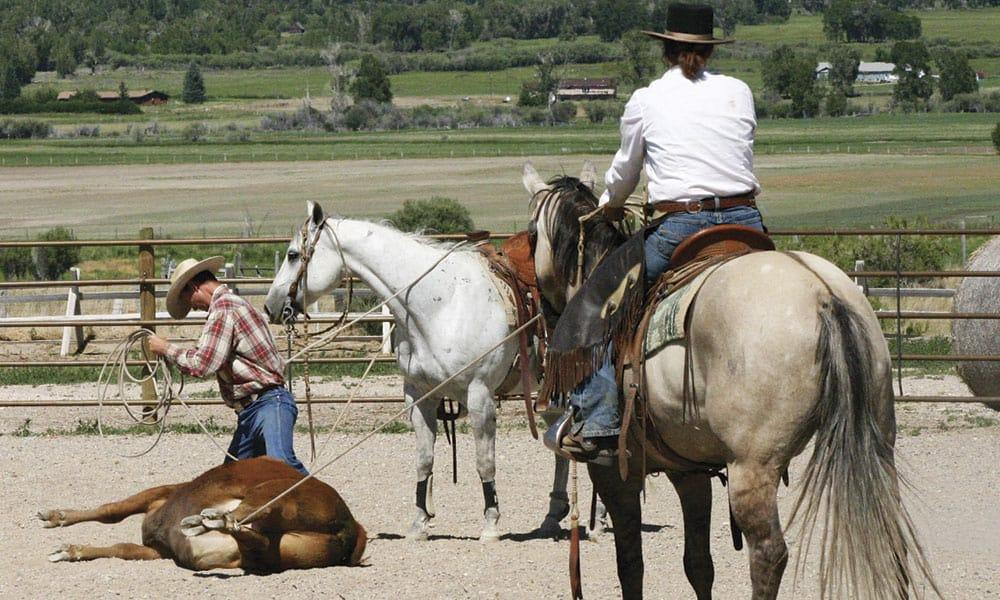 ranch geldings horses cowgirl magazine