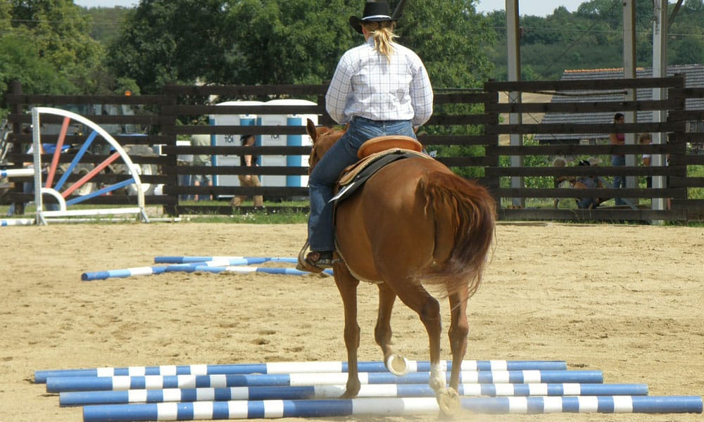 Cowgirl - Back