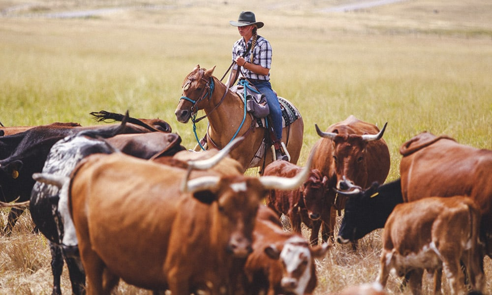 Cowgirl Spring Roundup Resort Paws Up Cowgirl Magazine