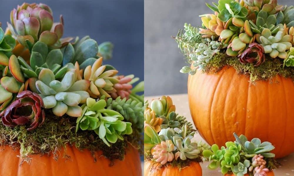 pumpkin planters planter junk gypsy cowgirl magazine fall y'all