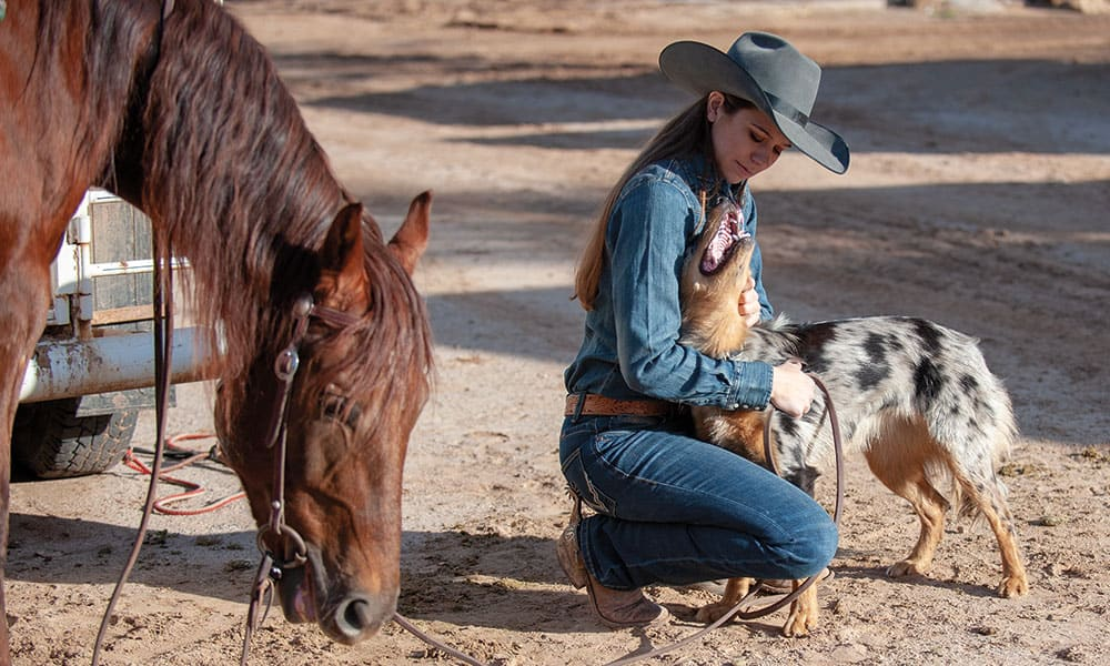 mesa with a horse and cow dog cowgirl magazine