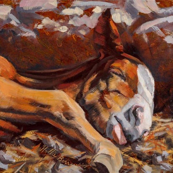 springtime sun by hollie berry cowgirl magazine