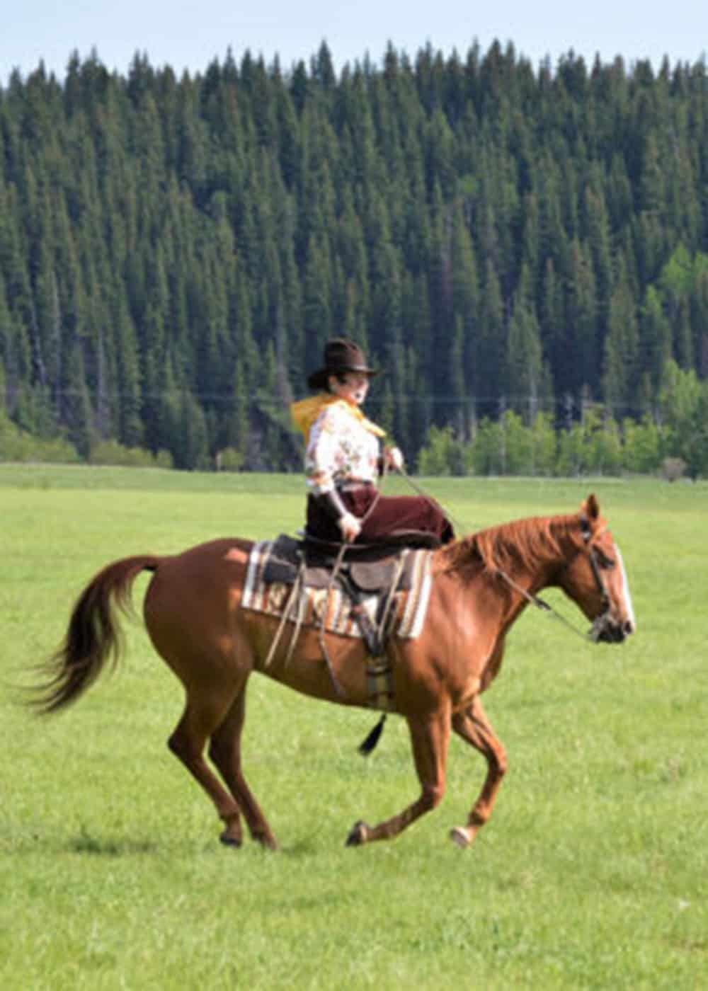 lee mclean side saddle art of the cowgirl cowgirl magazine