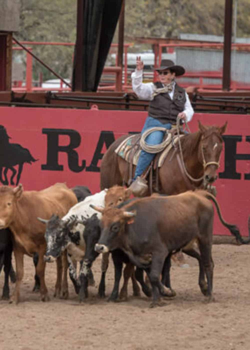 lee smith clinicians cowgirl magazine